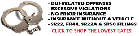 Florida FR44 Auto Insurance